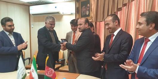 Photo of سفر هیئت عالی رتبه وزارت تحصیلات عالی افغانستان به ایران