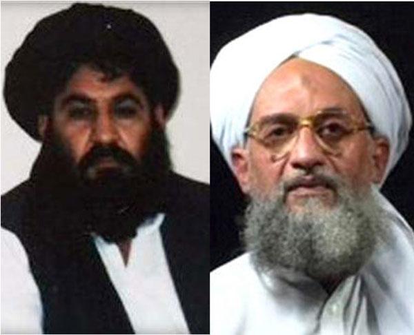 Photo of آیا همکاری شبکۀ القاعده با طالبان تا هنوزادامه دارد؟