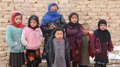 Photo of کمک به پنجصد خانواده جنگزده در بلخ